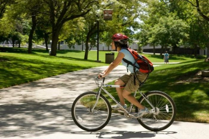 Nếu bạn đang còn ngồi trên ghế nhà trường và chiêm bao đi xe đạp thì nên vui mừng