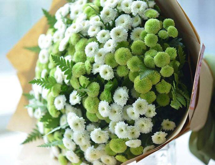 Hoa cúc trắng và xanh xuất hiện trong chiêm bao chứng tỏ bạn sẽ gặp được một người bạn