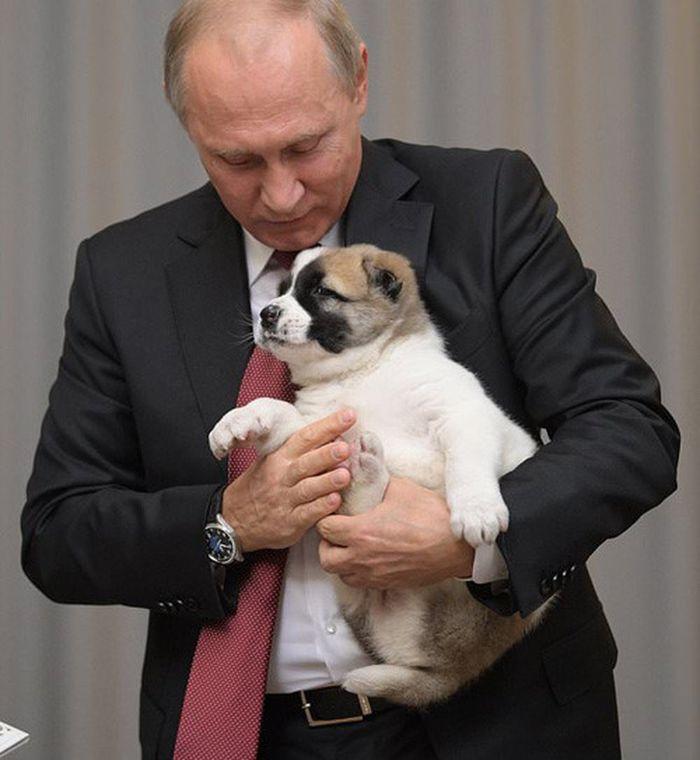 Chiêm bao thấy anh trai đang ôm chó con đánh con số 61 - 98