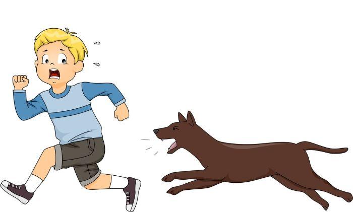 Chiêm bao thấy chó bị rượt đuổi, cắn đuổi chọn cặp số 34 – 73
