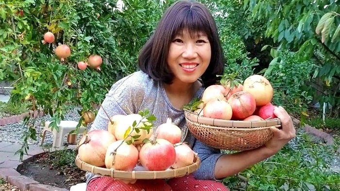 Mơ thấy hái trái cây là điềm báo gì? Tốt hay xấu?