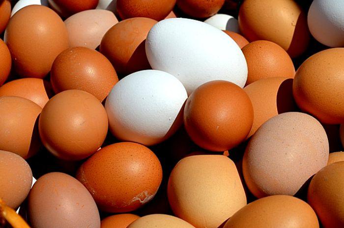 Mơ thấy trứng là điềm tốt hay xấu – nên đánh con số nào?