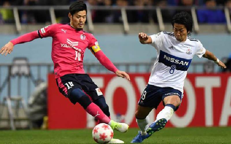Soi kèo Kitchee vs Cerezo Osaka lúc 17h00 ngày 9/7/2021