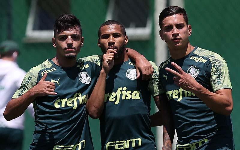 Soi kèo Palmeiras vs Santos lúc 2h30 ngày 11/7/2021